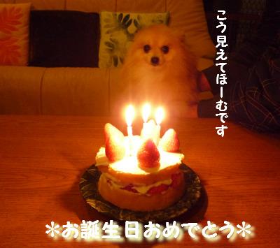 お誕生日おめでとう.jpg