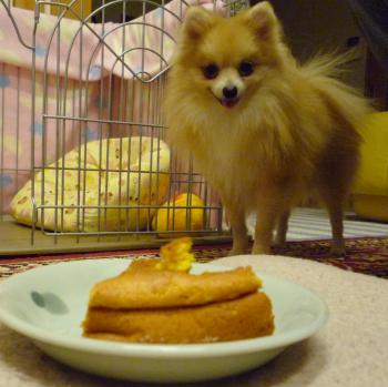 ケーキとほーむ-1.jpg