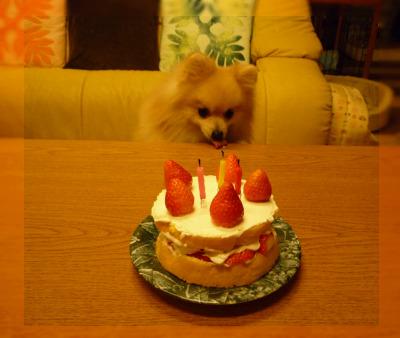 ケーキの前で.jpg