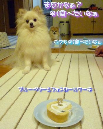 ケーキ早く食べたいなぁ.jpg