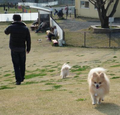 名犬牧場-6.jpg