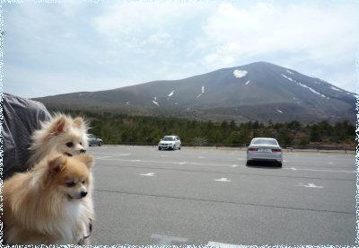 浅間山と一緒に.jpg