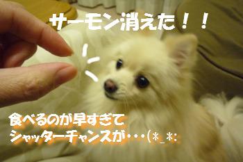あろー-2.jpg