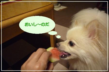 スイカ食べる?-5.jpg