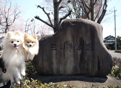 三ツ寺公園-1.jpg