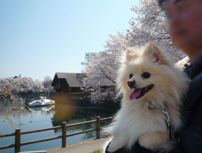 三ツ寺公園-2.jpg