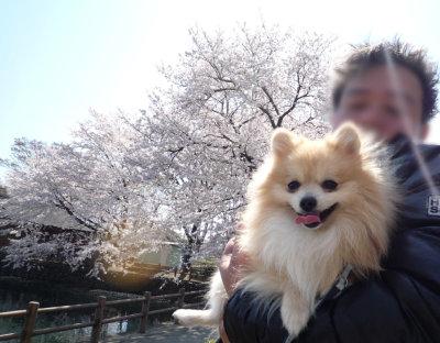 三ツ寺公園-3.jpg