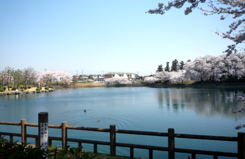三ツ寺公園-4.jpg